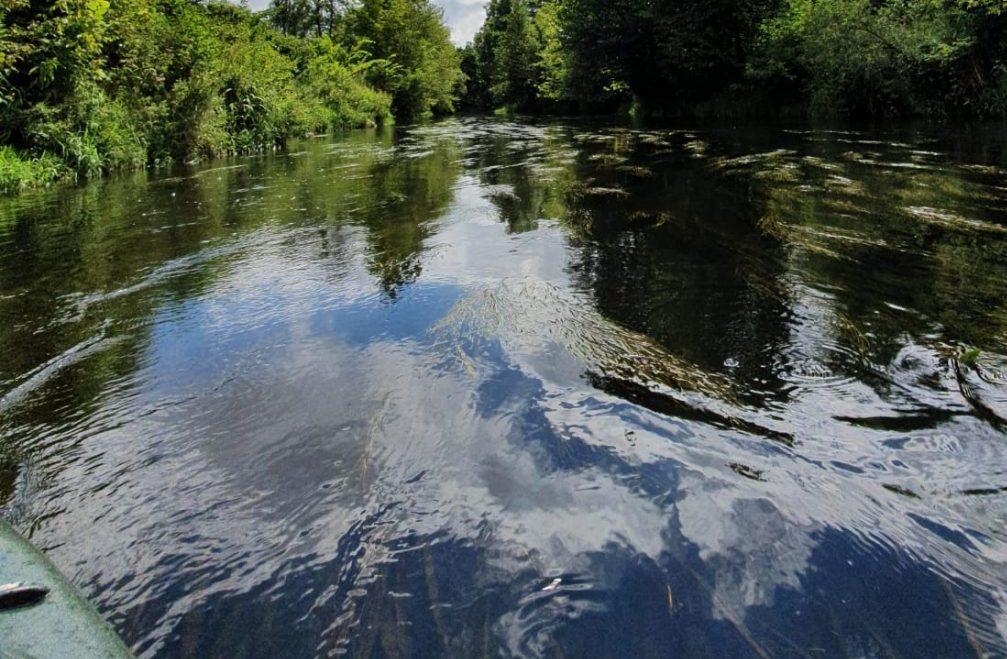 spływy kajakowe Skrwa